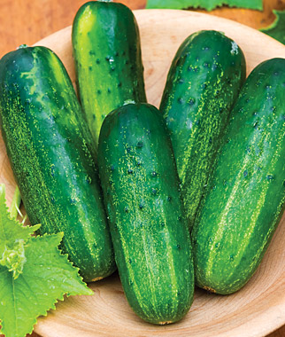 cucumber acne scar home remedy