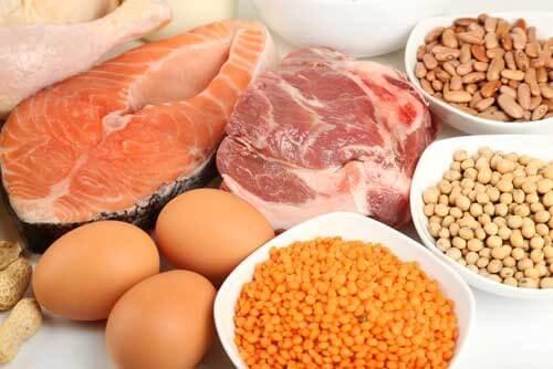 Eat protein: Bikini Body