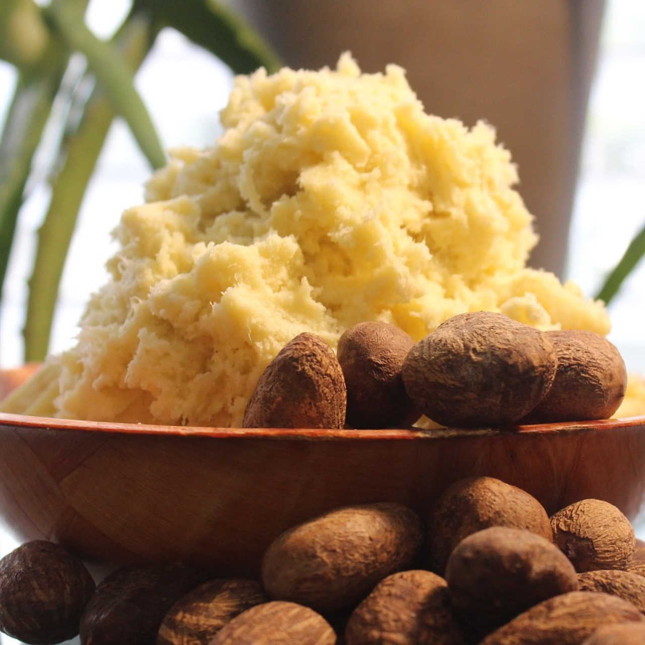 shea butter acne scar home remedy